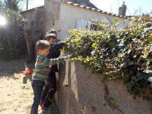 Jardinage Avril suite 001
