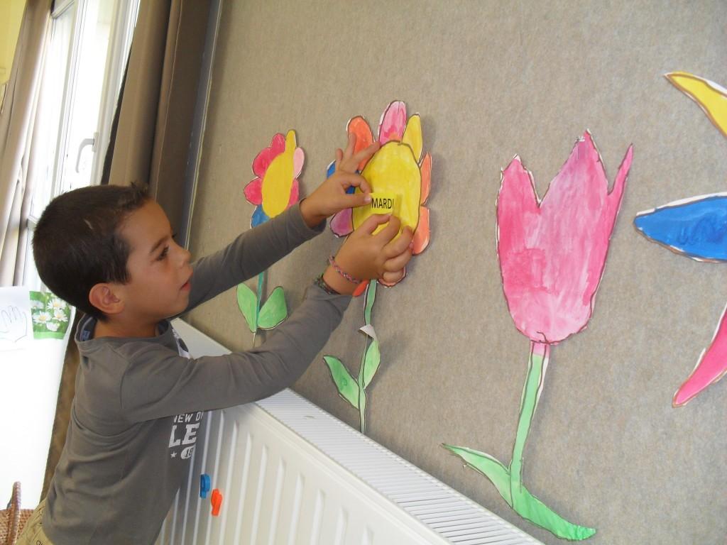 fleurs desjours (4)