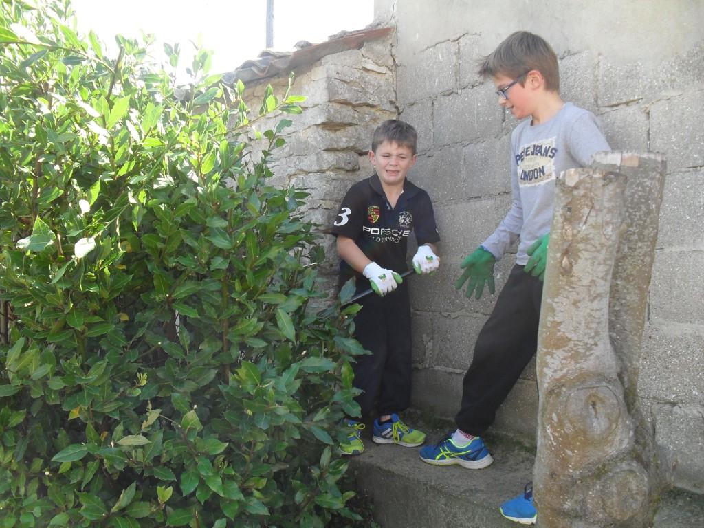 jardinage (8)