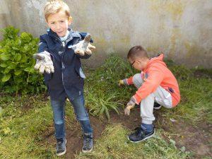 Jardinage Avril suite 026